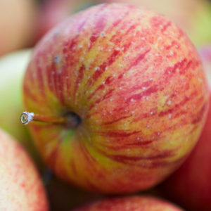 Саженцы яблони Рубинетто Россо